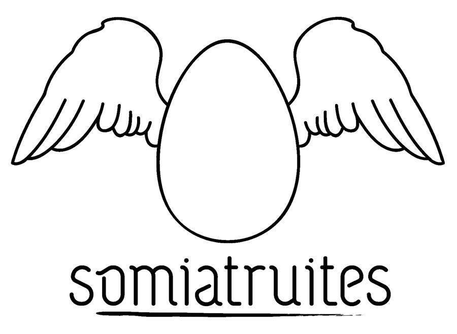Logo Somiatruites